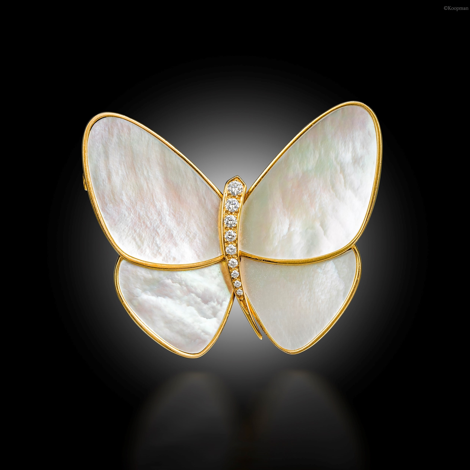 A Butterfly Clip Brooch