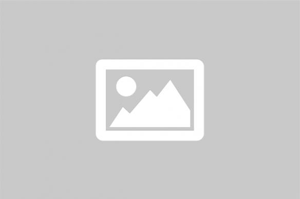 Kuppman i sierra leone domda